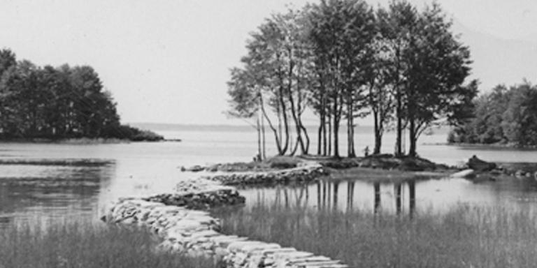 Landschaft mit See und Bäumen bei Säkylä, Finnland