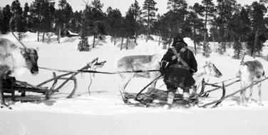 Die bislang nördlichste Topothek: Sápmi