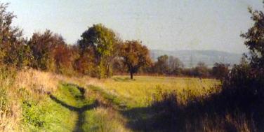 Spuren der Feldbahn