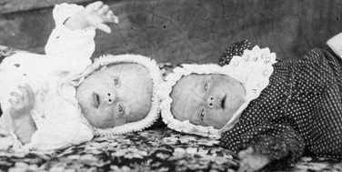 An einem Tag gingen die Topotheken von Piikkiö und Mäntsälä online