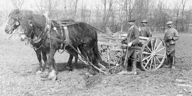 Landarbeit bei Poysbrunn